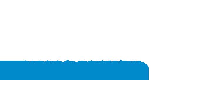 Loreto Araya Gerente General